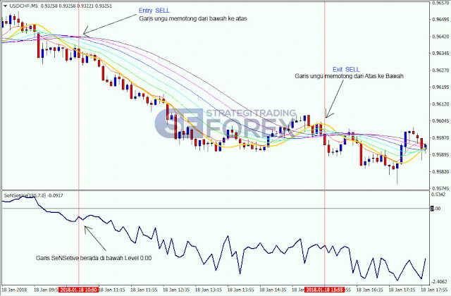 Belajar Strategi Forex Trading