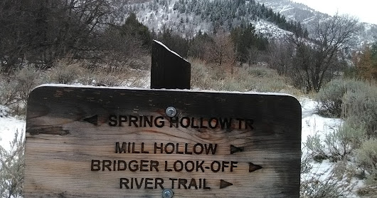 Spring Hollow Loop