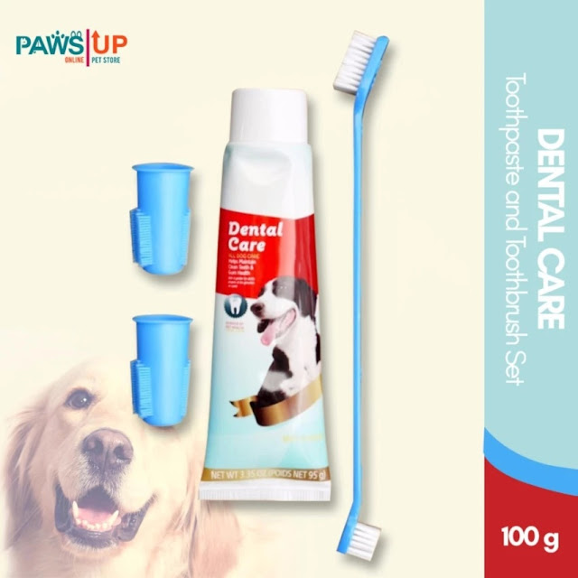 dental home care for dog