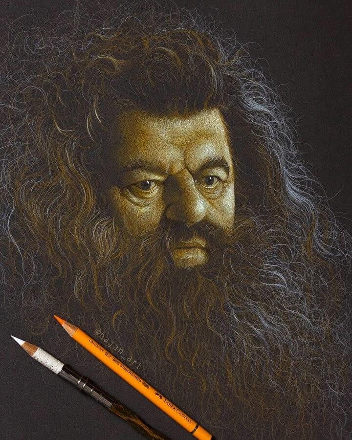 09-Rubeus-Hagrid-Robbie-Coltrane-Lukasz-Andrzejczak-www-designstack-co