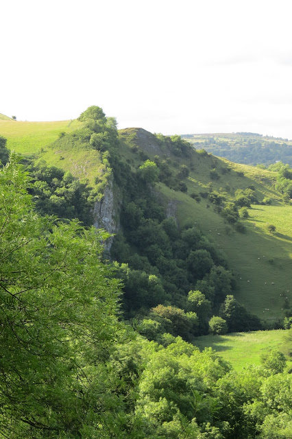 A sheer crag, standing above the valley floor with trees and grass on the hillside below it.