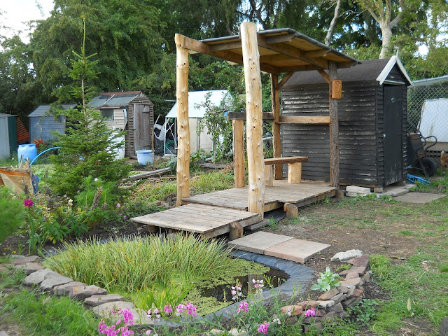 allotment shelter made from larch timber