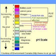 Το pH διαφόρων υγρών.