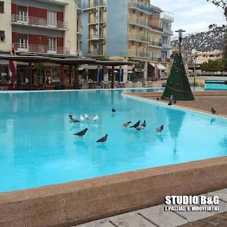 Πάγωσε και η λίμνη στην πλατεία του Άργους (βίντεο)