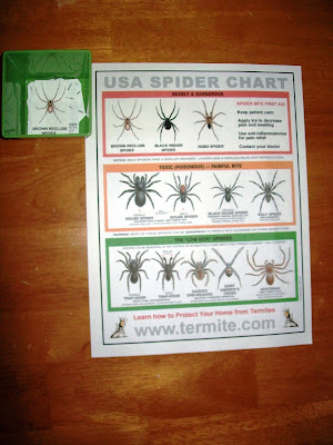Spiders of the USA match up