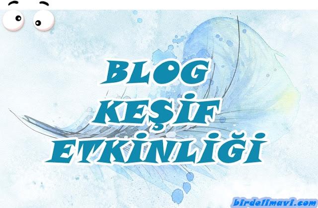 blog keşif etkinliği, kişisel blog, bir deli mavi
