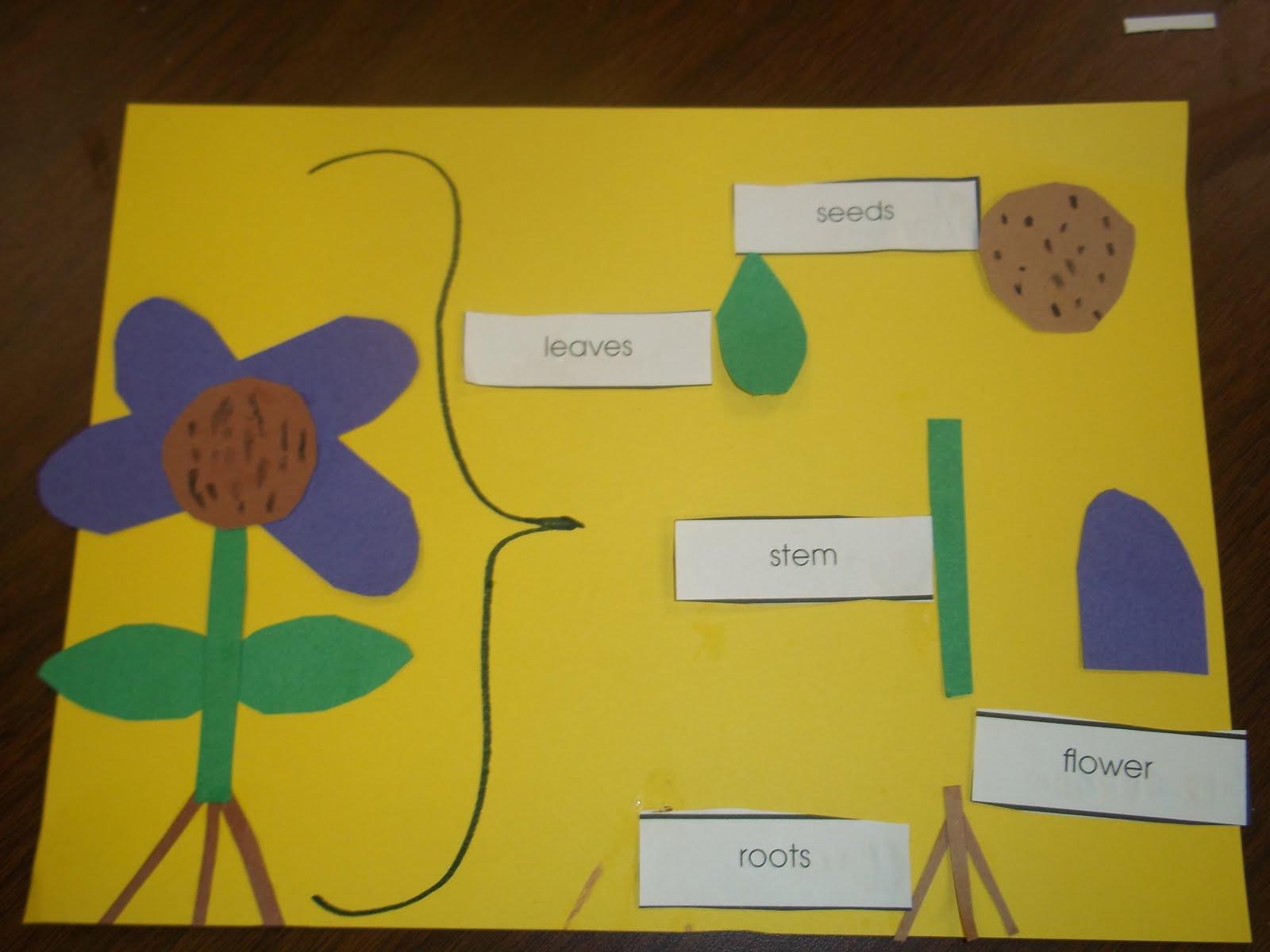 5 Senses Kindergarten Worksheet 5 Best Free Printable