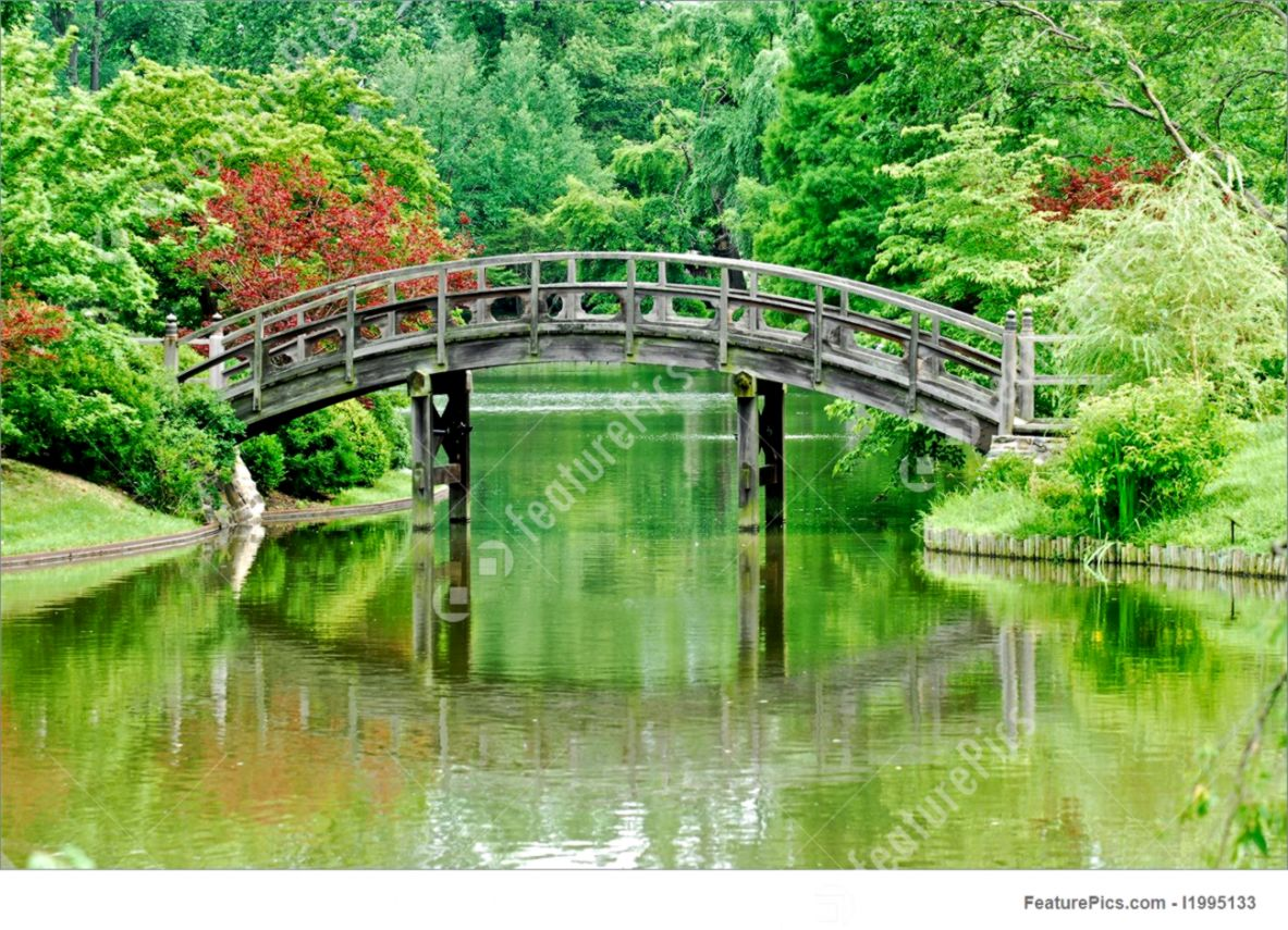 Picture Of Japanese Bridge