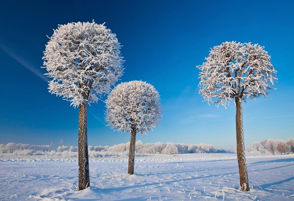 فصل الشتاء الجميل