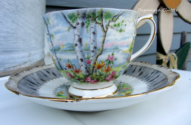 Royal Albert Teacup Silver Birch Pattern