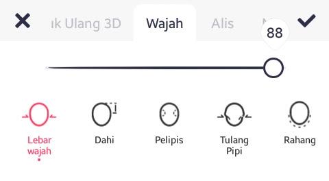 Tab Wajah
