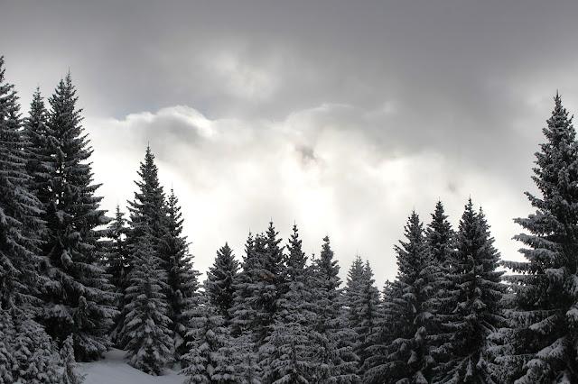 Les Saisies - Hauteluce - Savoie
