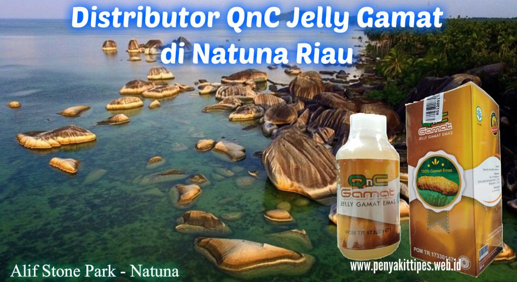 Distributor QnC Jelly Gamat di Natuna Riau