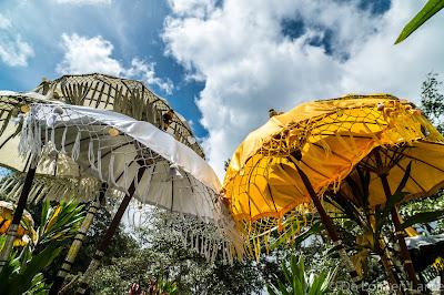 Ombrelles-Tamblingan-Bali