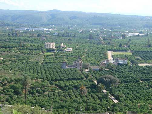 https://es.slideshare.net/hmcburuaga/comentario-paisaje-agrario