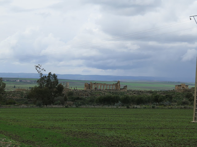 Sitio de Volubilis