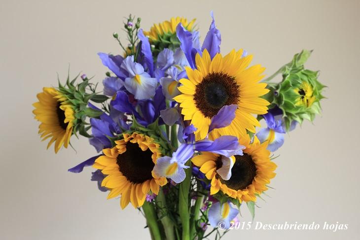 Descubriendo Hojas Arreglos Florales Y El Mercado De Flores