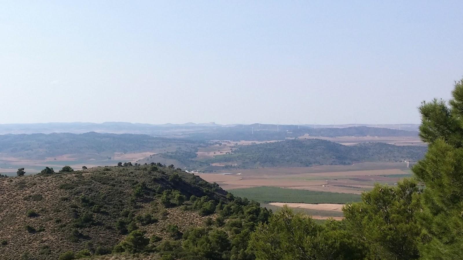 alto hembra azotar en Albacete