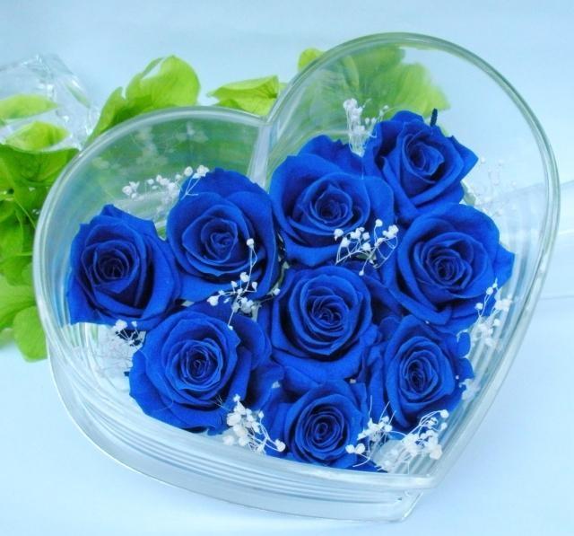 Những bó hoa hồng đẹp dành tặng sinh nhật bạn gái 1