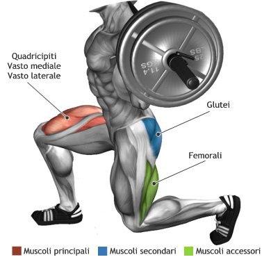 the best leg exercises for big wheels  multiple fitness