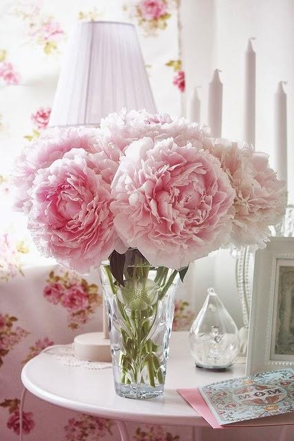 gorgeous light pink peonies