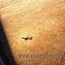 Uçağın Penceresinden, İçinde Olduğum Uçak ve Yaşama Bakış Açısı