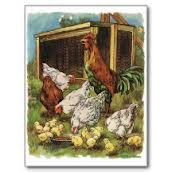 The rooster is just a bragging jerk. It's the little hen who does the work.