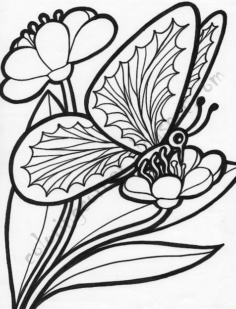 Butterfly And Flower Coloring Pages With Pages My Land