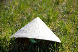 Fotos del Sombrero Vietnamita
