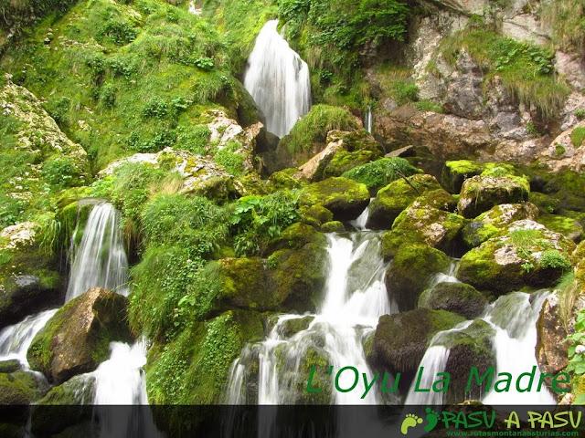 Oyu la Madre, Asturias