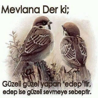 http://guzelsozlerfull.blogspot.com/2016/10/mevlana-sozleri-2016-kisa-ask-sozleri.html