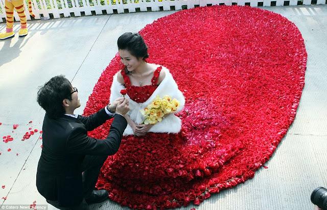The Chinese Man Who Proposed With A Bridal Gown Made From 9,999 Roses