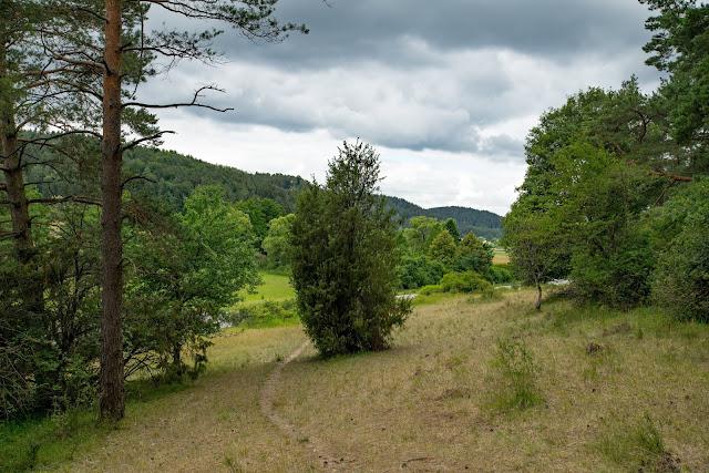 Wacholderweg von Aicha nach Allersburg  Wandern im Amberg-Sulzbacher Land 04