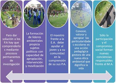 Conclusión cultura ambiental