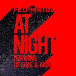 Flo Rida - At Night (feat. Liz Elias and Akon) - Single Cover