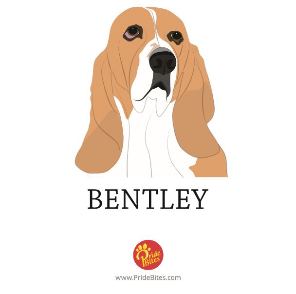 PrideBites did a fabulous job on Bentley's FREE drawing