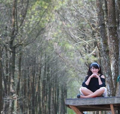 Hutan pinus yang Instagenik di Top Selfie Pinusan Kragilan