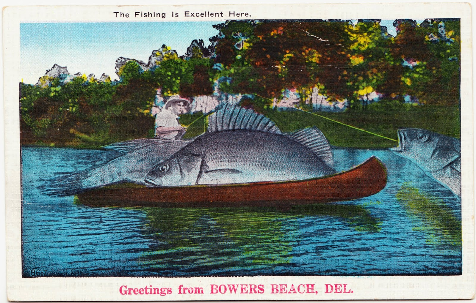 Pre Printed Text On The Front Of This Exaggerated Postcard Featuring A Huge Fish Fishing Is Excellent Here And Greetings From Bowers Beach Del
