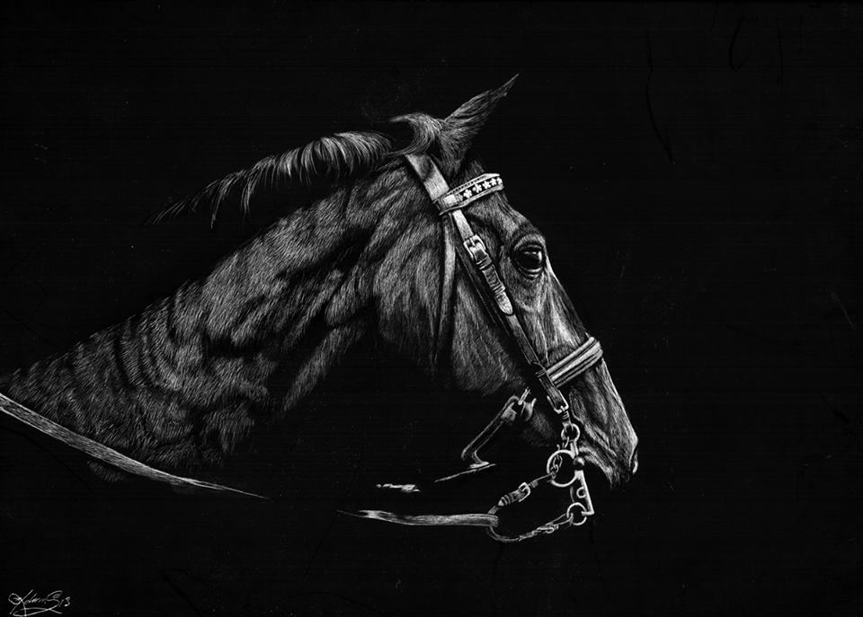 11-Horse-Allan-Ace-Adams-Scratchboard-Drawings-of-Wild-Animals-www-designstack-co
