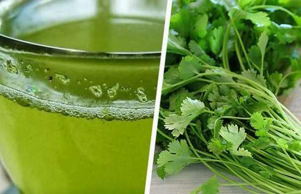 Té de cilantro para adelgazar
