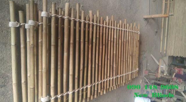 hàng rào cây trúc