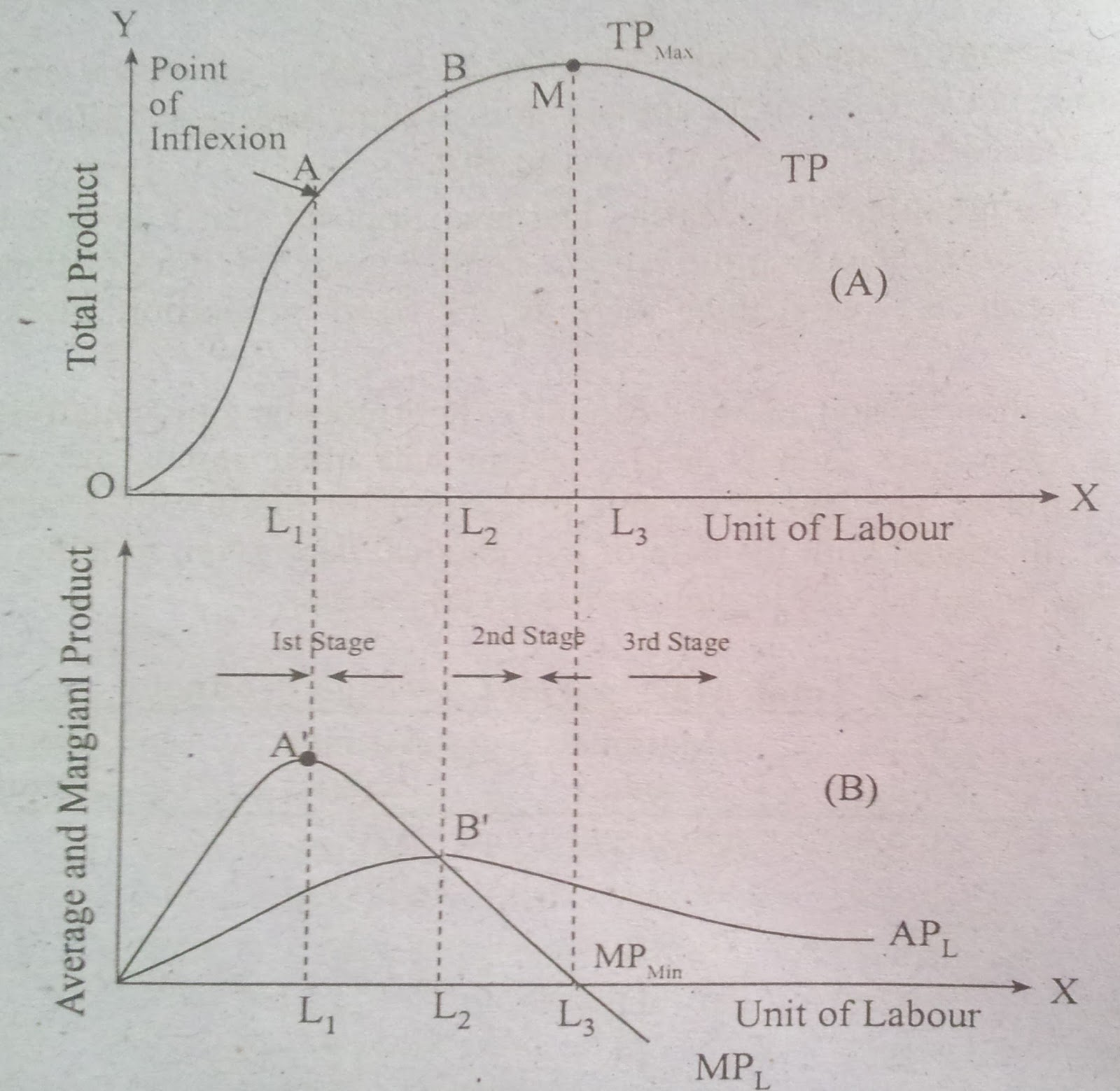 Project Management Law Of Variable Proportions