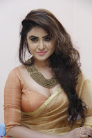 Sony Charistha in Lovely Brown Saree and Choli Spicy Pics ~  Exclusive 03.JPG
