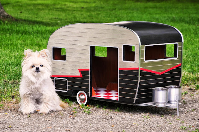 Hermosa casita para mi mascota