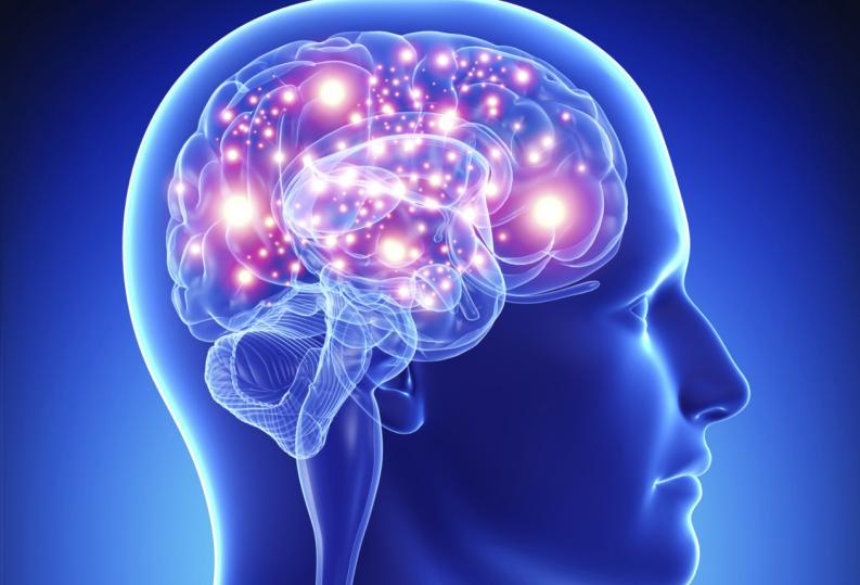 Como o cérebro rastreia o tempo: pesquisadores descobrem o 'relógio neural' que marca nossas experiências e memórias.