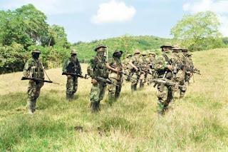 The New York Times cuestiona desmovilización de paramilitares en 2008
