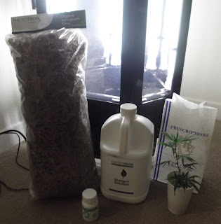 My Phototron Hydroponic Growing Experience