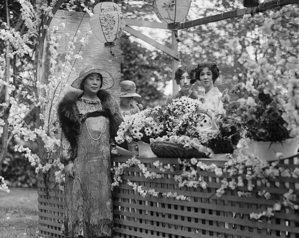 Fiesta en el jardín