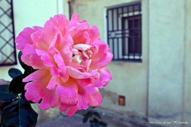 Castielfabib (Valencia).