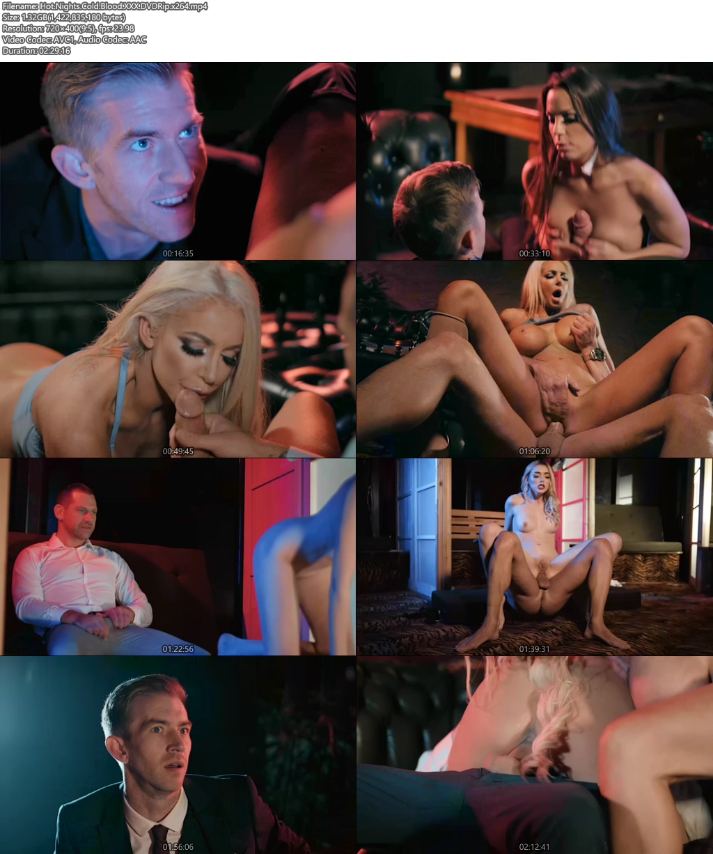 [18+] Hot Nights Cold Blood XXX Movie 2019 DVDRip x264 Screenshot